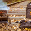 FENNEK Grill & Backpack Bus4fun.de